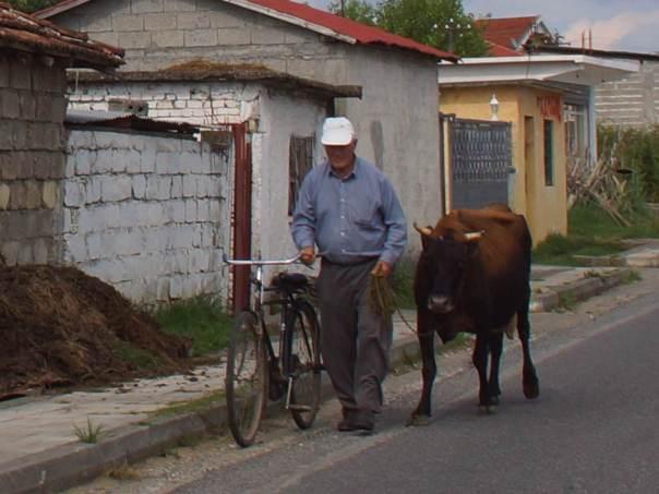 0055 So geht man n in Albanien - Foto © Wolfgang Pehlemann DSC05750