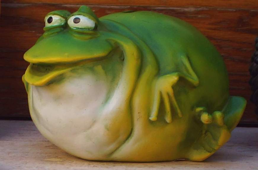 0140 77 Nun sei kein Frosch sag schon lachst du den Intercampianer an oder aus - Foto © Wolfgang Pehlemann DSC00475